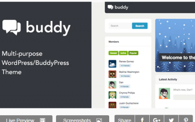 You are downloading Buddy: Simple WordPress & BuddyPress Theme whose current version has been getting more updates nowadays, so, please