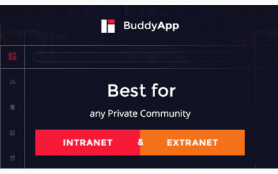 You are downloading BuddyApp - Mobile First Community WordPress theme whose current version has been getting more updates nowadays, so, please