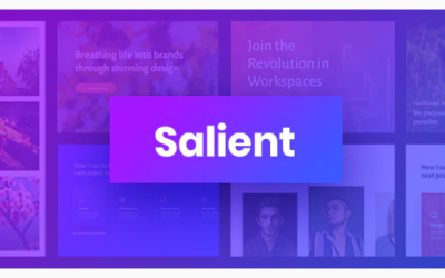 You are downloading Salient - Responsive Multi-Purpose Theme whose current version has been getting more updates nowadays, so, please keep