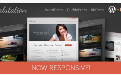 You are downloading Salutation Responsive WordPress + BuddyPress Theme whose current version has been getting more updates nowadays, so, please