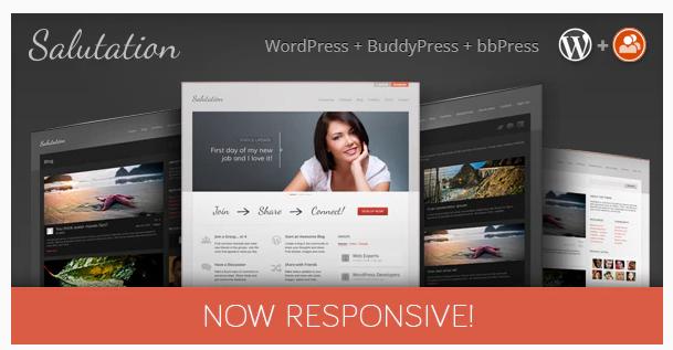 Download Salutation Responsive WordPress + BuddyPress Theme Nulled