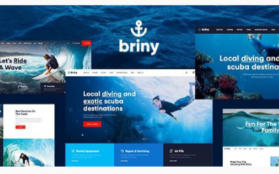 You are downloading Briny | Scuba Diving School & Water Sports WordPress Theme Nulled whose current version has been getting more updates nowadays,