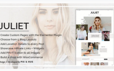 Download Juliet - A Blog & Shop Theme for WordPress Nulled