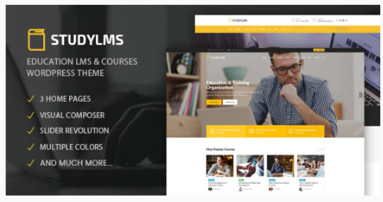 Download Studylms – Education LMS & Courses WordPress Theme Nulled