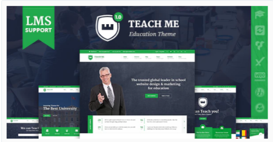Download TeachMe – WordPress Theme for Schools Nulled