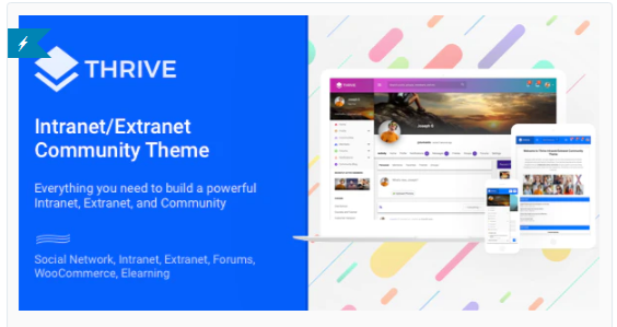 Download Thrive – Intranet/Extranet/Community WordPress Theme Nulled