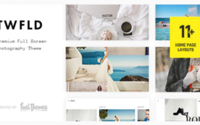You are downloading TwoFold - Fullscreen Photography WordPress Theme Nulled whose current version has been getting more updates nowadays, so, please