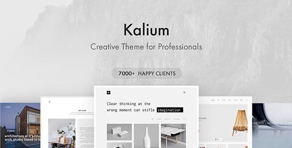 Download Kalium WordPress Theme Nulled